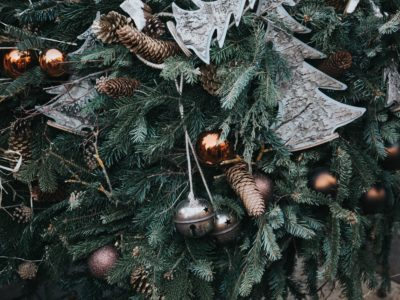 Choosing Christmas, An Advent Devotional from All Things Southern
